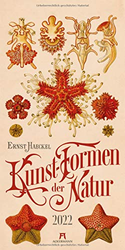 Kunst-Formen der Natur - Ernst Haeckel Kalender 2022, Wandkalender im Hochformat (33x66 cm), Naturkundliche Illustrationen, Vintagekalender
