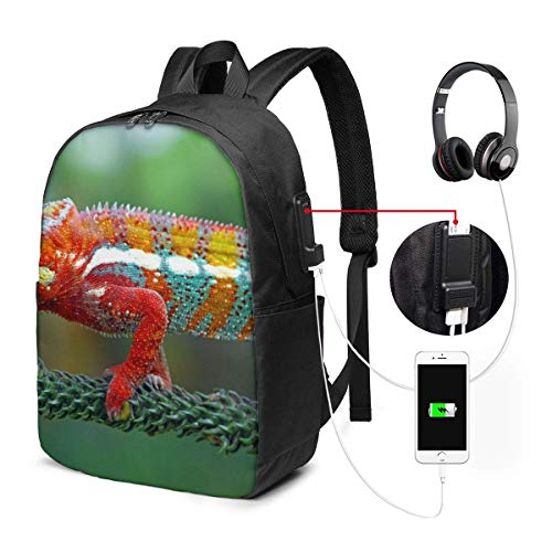 Californian Sea Lion Fashion Travel Backpacks for Men and Women, School Laptop Bookbags with USB Charging Port Fit 17 Inch