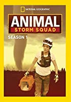 Animal Storm Squad: Season 1 / [DVD]