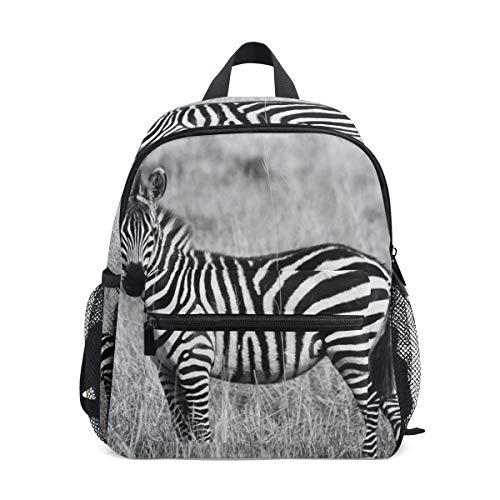 Zebra Arte Selvaggia Zaino per Asilo Nido Prescolare Bambini Studente Bookbag Zainetti per Viaggio Ragazze Ragazzi 2-7 Anni Capretto