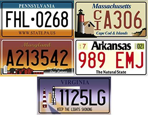 OPO 10 - Lote de 5 Placas de matrícula de automóviles de EE. UU. En Metal: réplicas de Placas estadounidenses Reales (v5)