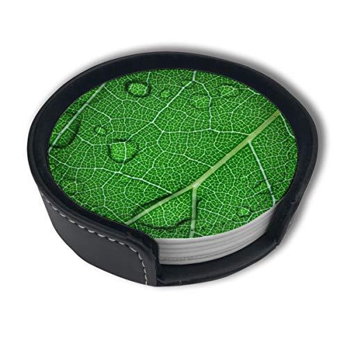 BJAMAJ Closeup Leaf Makro Drops Premium PU Leder Untersetzer Getränke-Runde Untersetzer mit Halter-Sets, geeignet für Zuhause und Küche (6 Stück)