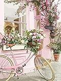 GenericBrands Pintura al óleo de Bricolaje por Kits de números Bicicleta de jardín Lienzo Pintura al óleo para Adultos y Principiantes de Dibujo con Pinceles 40 * 50 cm sin Marco