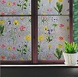 Etiqueta engomada de la puerta de la cocina del celofán de color etiqueta engomada del vidrio de la ventana del baño etiqueta engomada del vidrio del baño decoración del hogar película A50 45x100 cm