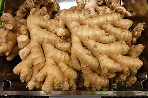 Organic fresh ginger from Peru (2)