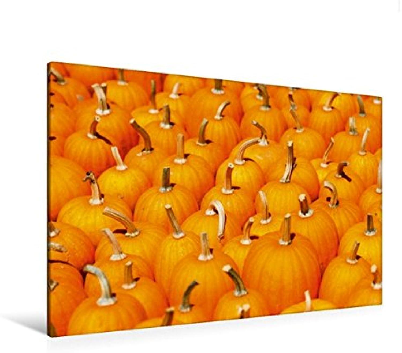 Calvendo Premium Textil-Leinwand 120 cm x 80 cm quer, Kürbisse leuchten   Wandbild, Bild auf Keilrahmen, Fertigbild auf echter Leinwand, Leinwanddruck Natur Natur