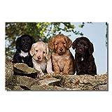 Cute puppy dog greeting card. Cocker spaniels by Charles Sainsbury-Plaice