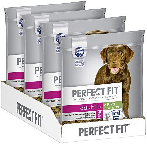 Perfect Fit Adult 1+ – Trockenfutter für erwachsene Hunde über 10 kg – Reich an Huhn – Unterstützt die Vitalität – 4 x 1,4 kg