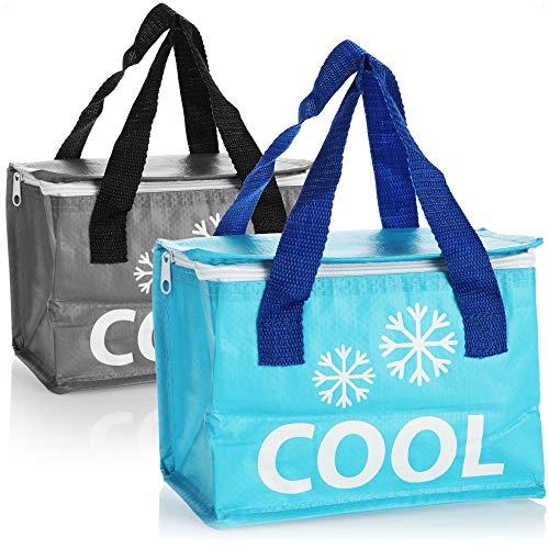 com-four 2X Bolsa más Fresca: pequeña Nevera térmica Plegable, Bolsa con Aislamiento Ligero para Acampar y al Aire Libre, Bolsa de Picnic [la selección varía] (02 Piezas - Azul grisáceo - 4L)