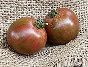 Purple Bumblebee Heirloom Tomato Premium Seed Packet
