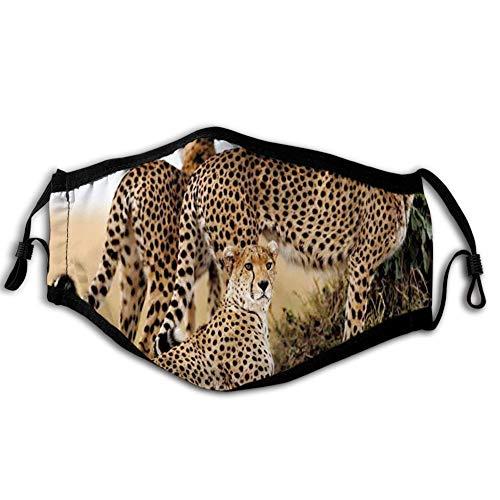 Comfortabele Winddichte Gezicht cover,Cheetahs Moeder en Twee Jonge Baby Op zoek naar Voedsel Gevaarlijke Exotische Dieren, Gedrukte Gezichtsdecoraties voor man en vrouw