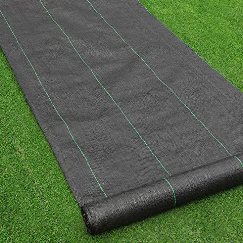 SunZ Malla Antihierbas Verde Resistente A Roturas con Proteccion UV para El Control De Maleza En JardíN Y Huertos EcolóGicos OcultacióN Polipropileno (PP)(1M x 25M)