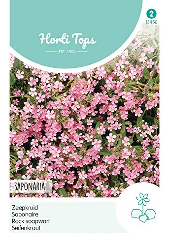 Hortitops 15458 Seifenkraut (Blumensamen)