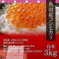 【お取り寄せグルメ】魚沼産コシヒカリ 3kg 白米・贈答箱入り/ギフトに新潟の最高級ブランド米を