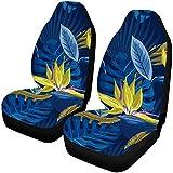 Ananas, Papaya, Hibiskus und tropische Blätter Auto Seat Protector 2er Pack, Fahrzeug Seat Protector Auto Mat Covers, passen die meisten Fahrzeug, Limousine, LKW, SUV, Van