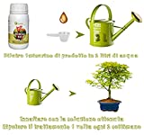 Zoom IMG-1 biobob concime per pianta bonsai