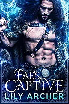 Fae's Captive by [Lily Archer]