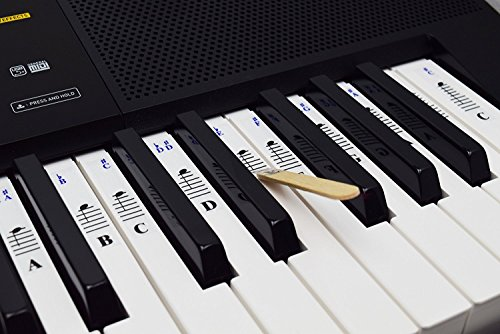 QMG Piano Stickers for 49/61/ 76/88 Key Keyboards – Transparent and Removable; Made in USA