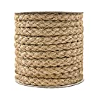 Tenn Well Braided Hemp Rope, 11mm Thick Jute String for DIY Cat Scratcher, Gardening Bundling Craft Decoration (Brown)