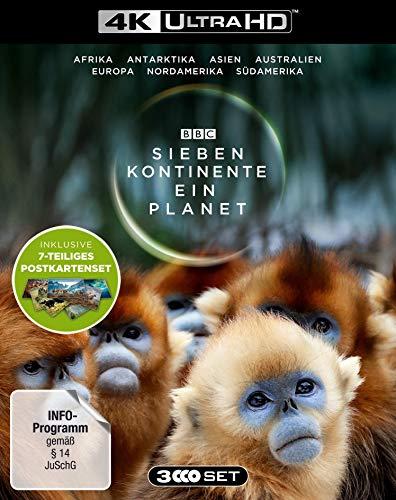Sieben Kontinente - Ein Planet (4K UHD). Limited Edition mit Postkarten-Set - (exklusiv bei Amazon.de mit 7-teiligem Postkarten-Set) [Blu-ray]