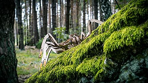 EWA Eco-Wood-Art Spider