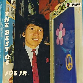 The Best Of Joe Jr.