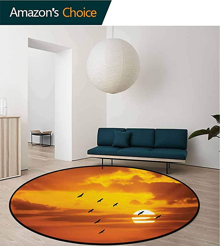 RUGSMAT Birds Rug Round Home Decor Area Rugs V Shaped Formation Flying In Cloudy Scenic Sky With Majestic Sunset Cloudscape Print Non Skid Bath Mat Living Room Bedroom Carpet Diameter 59 Inch