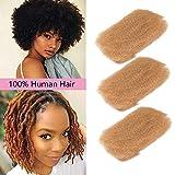 DÉBUT Afro Kinky Bulk 10A Human Hair 3pcs/lot for Dreadlocks and Twist Braiding 50g / Bundle Full Head (10'10'10', 27: HONEY)