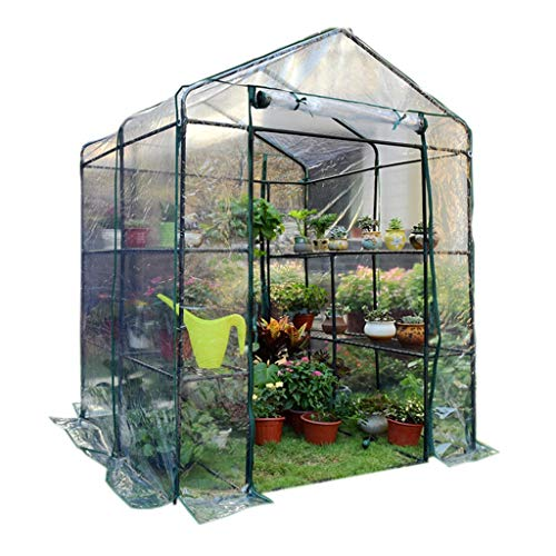 Serres de Jardin Tunnel extérieure - Articles ménagers Légumes/Fruits Maison Verte avec 12 étagères et Couvercle renforcé Robuste, 143 × 143 × 195cm Tomate (Couleur : Clair)