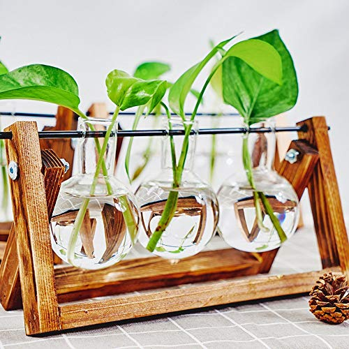 KnikGlass Hydroponische Vase Deko Holz Halter mit Hydroponik Glasvase Hängevase Blumenvase Tischvase Dekovase für Hydrokultur Pflanzen, Zuhause oder Büro Dekoration (Braun, 3 Vasen)