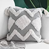 blue page Boho Neutral Decorative Throw Pillow Covers 18X18 Inch, Woven Tufted Square Pillows Cover for Couch Sofa Bedroom Living Room, Indoor Outdoor Grey Pillow Cases with Tassels