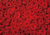 DANIU Telón de fondo Flor Pared Rojo Floral Moda Resumen Antecedentes Estudio Foto Retrato Boda Fiesta Cumpleaños Video Photobooth Fotografía