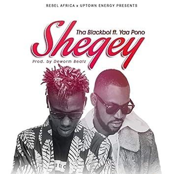 Shegey (feat. Yaa Pono)