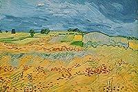 ゴッホの油絵アートプリントポスター Landscape at Auvers - フィンセント ファン ゴッホ 世界の名画 高級ポスター 80cmx120cm 特大 アートプリントキャン バス 写真