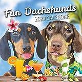 Fun Dackel 2020 Wandkalender 2020 (2020)