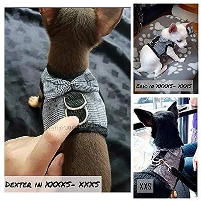 Pretty Pampered Pets XXXXS XXXS Size Puppy Dog Harness TINY PUPPY DOG Chihuahua Yorkie Teacup Kitten PUPPY DOG COAT SMALL EXTRA clothing clothes XXS XXXS (Black/White)