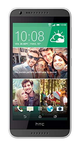 HTC Desire 620Smartphone entsperrt 4G, Bildschirm: 11,4cm / 5Zoll, 8GBo, einfache SIM, Android 4.4KitKat, Grau