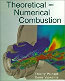 Theoretical and Numerical Combustion - R T Edwards - 20/01/2000