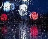 DIY Pintura Al óLeo por NúMeros Kits Tema Pintura Al óLeo Digital Kits De Lona CumpleañOs Boda O DecoracióN NavideñA Decoraciones LibéLula, Rama, Macro, Insecto