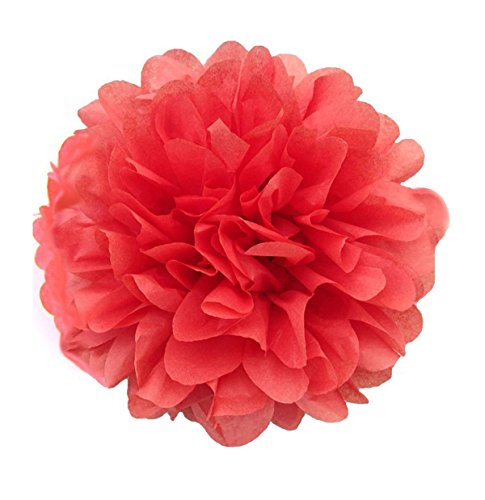 X-Sunshine 5pcs 8inch 10inch DIY Tissue Paper Flower Balls Outdoor Decoration Baby Girl's Room Craft Paper Pom Poms Hanging Flower For Party Wedding Christmas Birthday (5, Coral)
