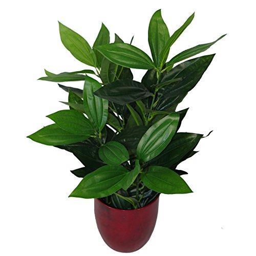 Leaf UK Gardens - Pianta Artificiale, 70 cm, Colore: Verde