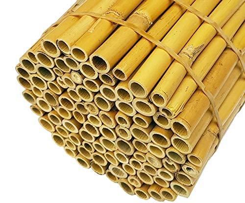 Hiss Reet® Schilfrohrhalme EXTRA als Insektenhotel Füllmaterial I Ideal auch als Niströhren für Wildbienen, Bienenhotel geeignet I Verschiedene Längen (L: 110 cm)