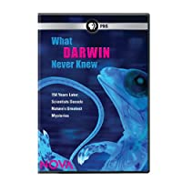 Nova: What Darwin Never Knew [DVD] [Import]