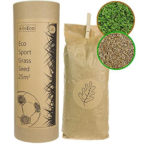 BeEco Öko-Grassamen | Sport und Spielrasen Mischung | Rasensamen Schnellkeimend 25m² | Perfekt für die Rasen Nachsaat | 100% Recyclebar in Einer Pappröhre | Grassamen ohne Pestizide angebaut
