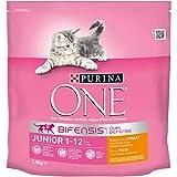 ONE - Chat - Junior - Poulet et Céréales Complètes - 1,5kg - Lot de 6