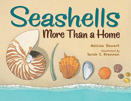 Compare Textbook Prices for Seashells: More Than a Home  ISBN 9781580898102 by Stewart, Melissa,Brannen, Sarah S.