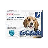 Beaphar Caniguard Duo Antiparassitario per Cani da 10 a 20 kg - 4 Pipette, M