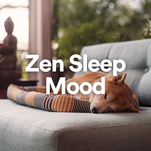 Deep Sleep, Relaxing Music, Sleep Sound Library & Ensemble de Musique Zen Relaxante