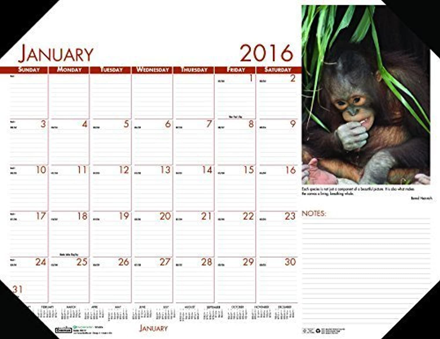 House of Doolittle Doolittle Doolittle 2016 Monthly Desk Pad Calendar, Earthscapes Wildlife, 22 x 17  (HOD172-16) by House of Doolittle B018RENGZQ | Neuankömmling