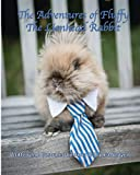 The Adventures of Fluffy The Lionhead Rabbit